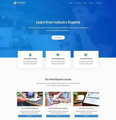 Wpastra – LearnDash Academy Website