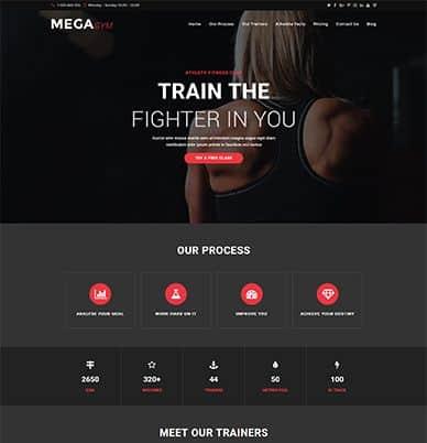 WpOcean – Mega Gym Website