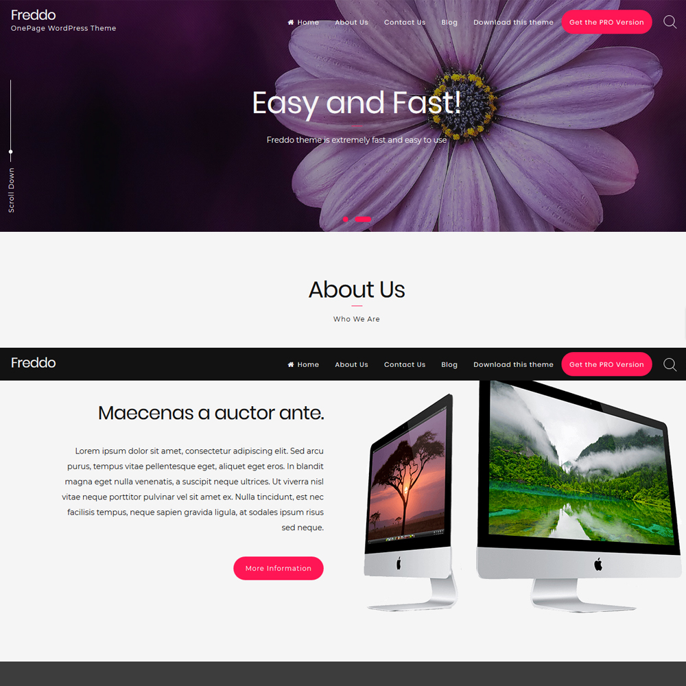 Freddo – Beautiful Company Website
